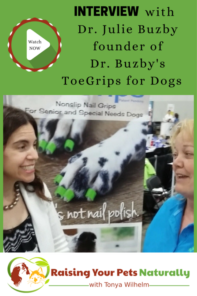 If you have old dogs or special needs dogs, you won't want to miss this interview with Dr. Julie Buzby. Learn how to prevent your dog from slipping on hardwood floors. Click to help your dog. #raisingyourpetsnaturally