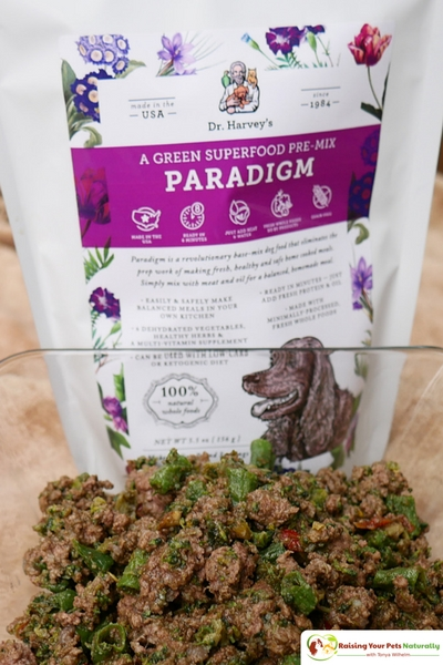 Are you looking for a natural and healthy grain free dog food? Check out my review of Dr. Harvey's Paradigm pet food mix. A ketogenic pet diet great for dogs with cancer, seizures, neurological conditions and weight loss. #raisingyourpetsnaturally