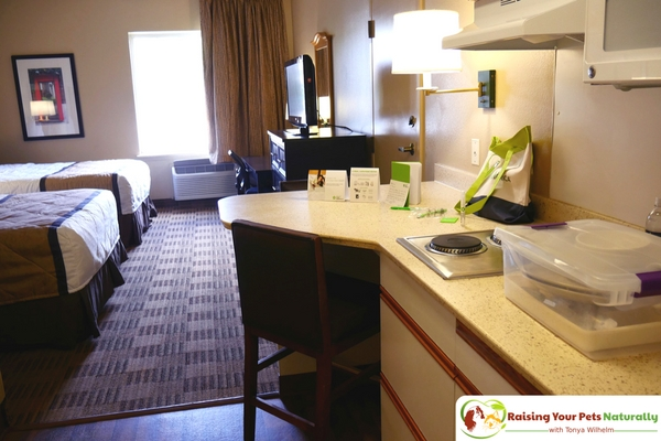 Pet-Friendly Hotels in Chicago Metro | Dog-Friendly Lombard Hotel Extended  Stay Review ~ Raising Your Pets Naturally with Tonya Wilhelm
