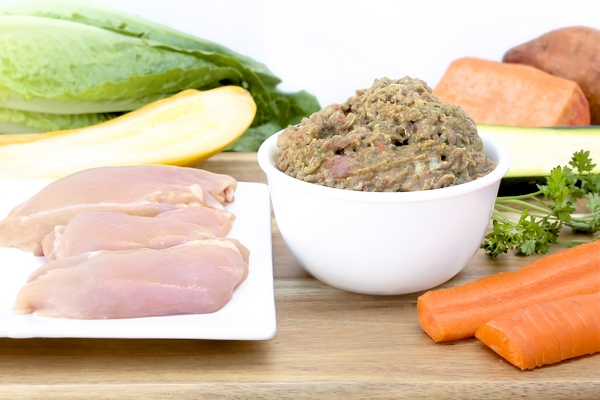 Freshly made dog and cat food