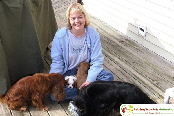 How to find a good puppy dog breeder near me