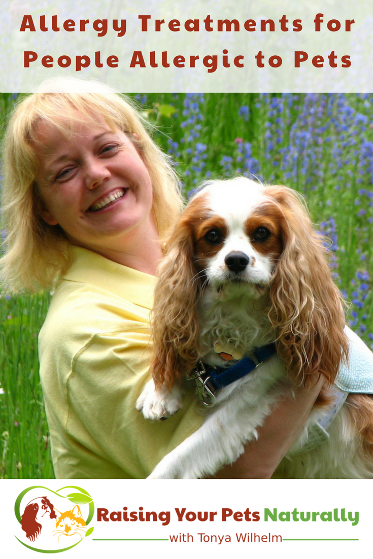 Dog and Pet Allergy Symptoms, Allergy Medicine and Natural Pet Allergy Treatment. Believe it or not, I'm allergic to dogs and probably cats! Learn about my dog allergy treatment and what you can do about pet allergies today. #raisingyourpetsnaturally #dogallergy #allergictodogs#petallergies