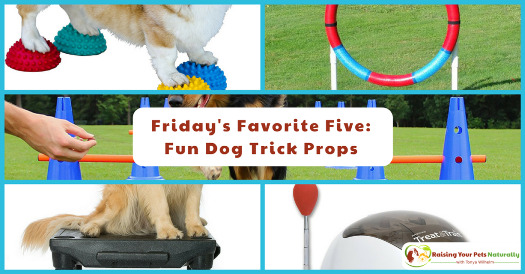 Friday's Favorite Five: Fun Dog Trick Props. I thought it would be interesting to share five fun dog trick props that you can use in your next positive dog training session. #raisingyourpetsnaturally
