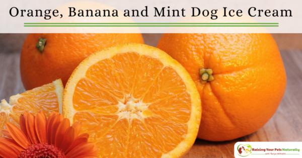 Healthy Dog Ice Cream Recipes You Can Share. Orange, banana and mind dog ice cream recipe. #raisingyourpetsnaturally