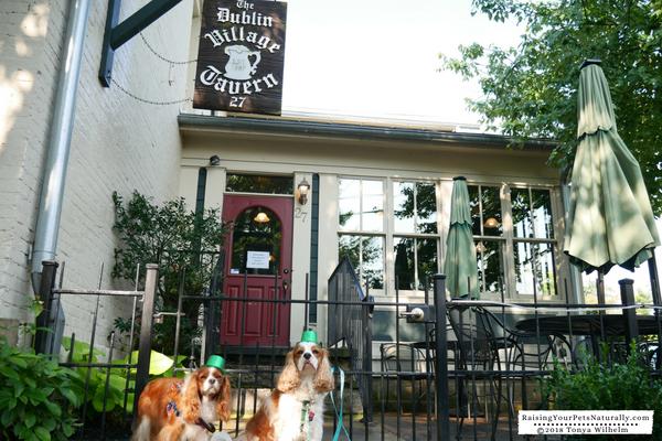 Irish Restaurants in Dublin, Ohio