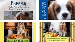 Tonya's Published Books