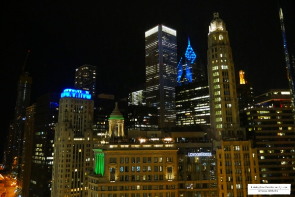 Pet-Friendly Luxury Hotels in Downtown Chicago. Read our experiences at Trump Chicago and learn about their Trump Pets Program. #raisingyourpetsnaturally