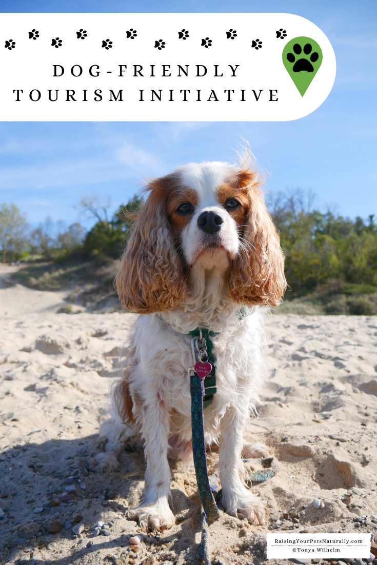 Dog-Friendly Tourism Initiative and Dog-Friendly Vacations and Travel. The Dog-Friendly Tourism Initiative isn't just for visitors; it benefits local dog families and business alike. #raisingyourpetsnaturally #dogfriendly #tourism #tourismideas #petfriendly