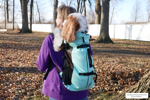 If you're looking for a dog carrier backpack that is designed for safety and comfort, check out the K9 Sport Sack™ AIR PLUS. #raisingyourpetsnaturally
