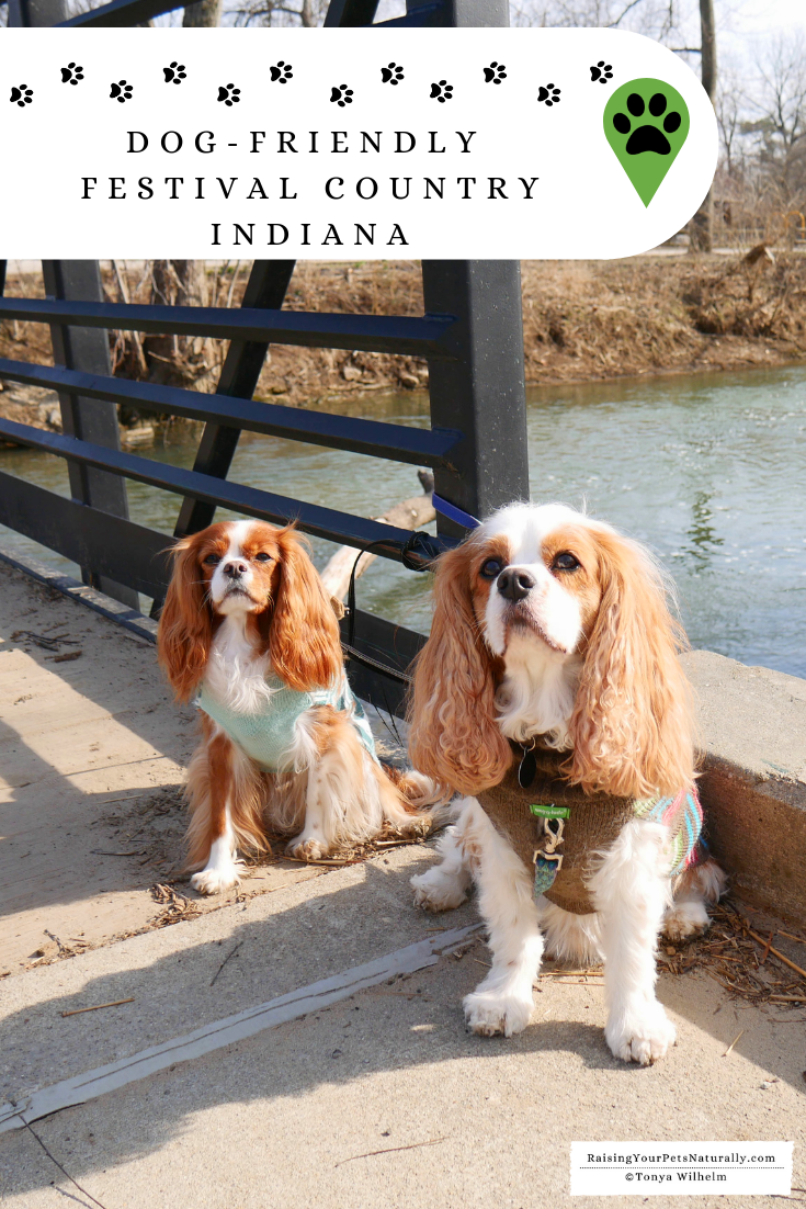 Dog-Friendly Festival Country Indiana Road Trip. A fun Midwest weekend road trip with a dog. #raisingyourpetsnaturally #dextersdestinations #festcountryin #dogfriendly #dogfriendlyindiana #mwtravel #dogfriendlymidwest #petfriendly #travelingwithdogs #dogroadtrip