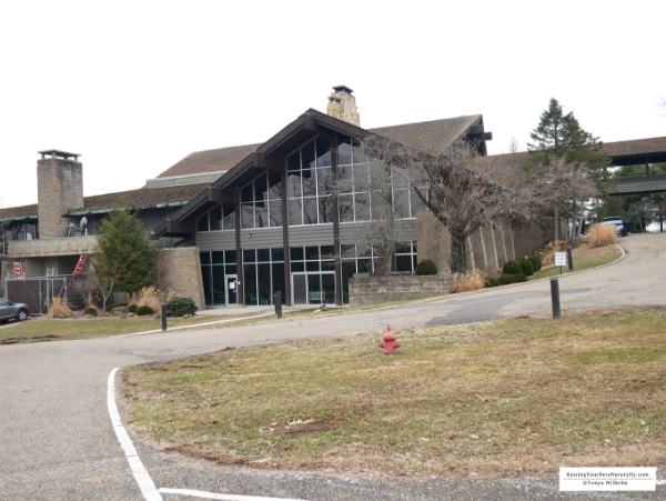 Salt Fork Lodge is one of the Great Ohio Lodges nestled inside of Ohio's largest state park, Salt Fork. Salt Fork Lodge offered a perfect dog-friendly retreat. #raisingyourpetsnaturally