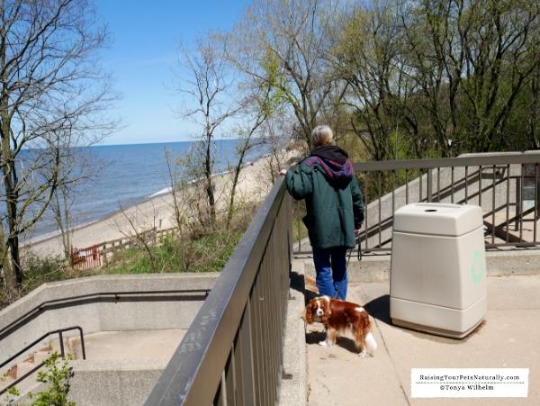 Picnic areas along Lake Michigan