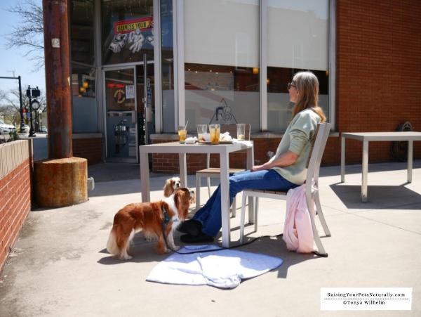 Best dog friendly patios in Indiana