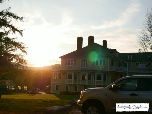 Pet-friendly inns in Maine
