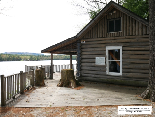 Dog friendly cabins in Bethel Maine