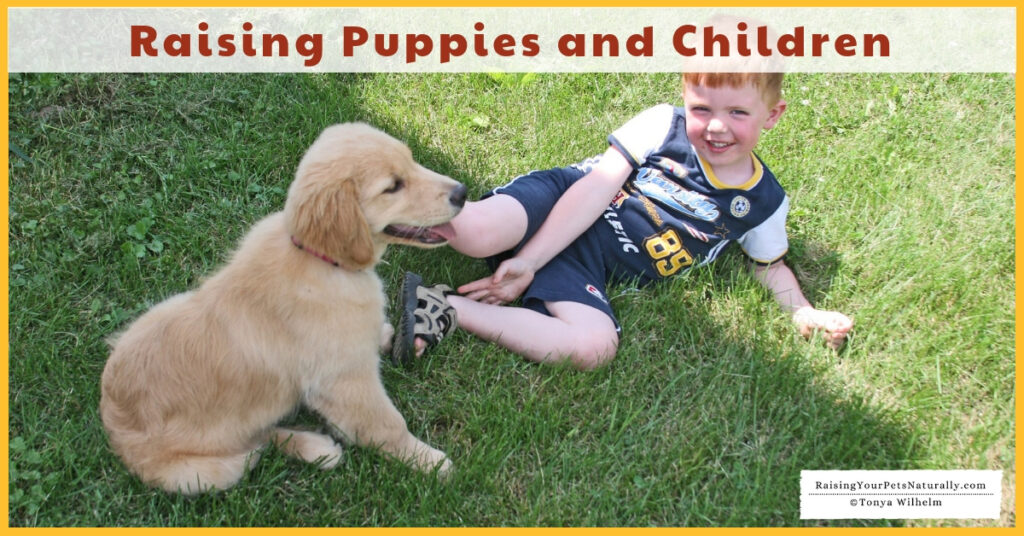 Teaching dogs and kids
