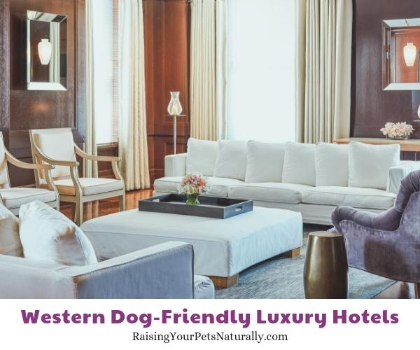 Western dog friendly hotels