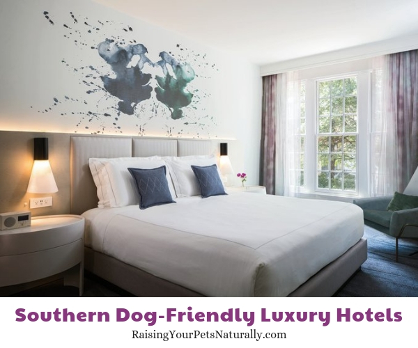 Virginia luxury pet friendly hotels