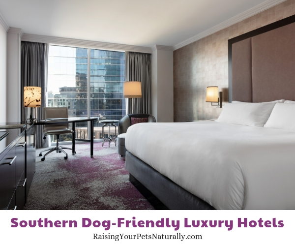 Best pet friendly resorts in Atlanta
