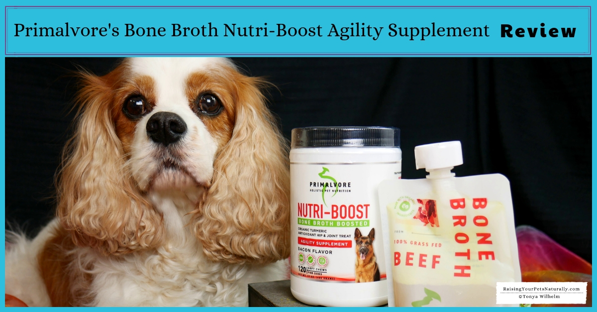 All natural pet supplements