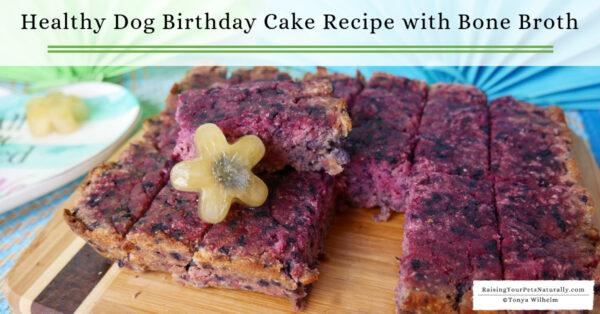 Easy dog cake recipe