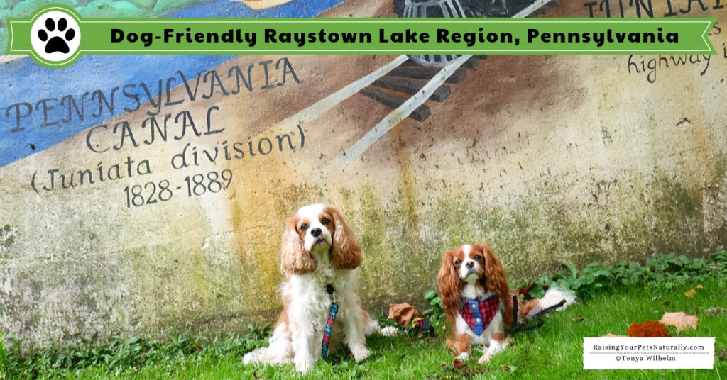 Dog-friendly vacations in Pennsylvania