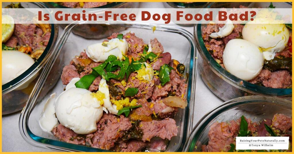 Best grain free dog foods