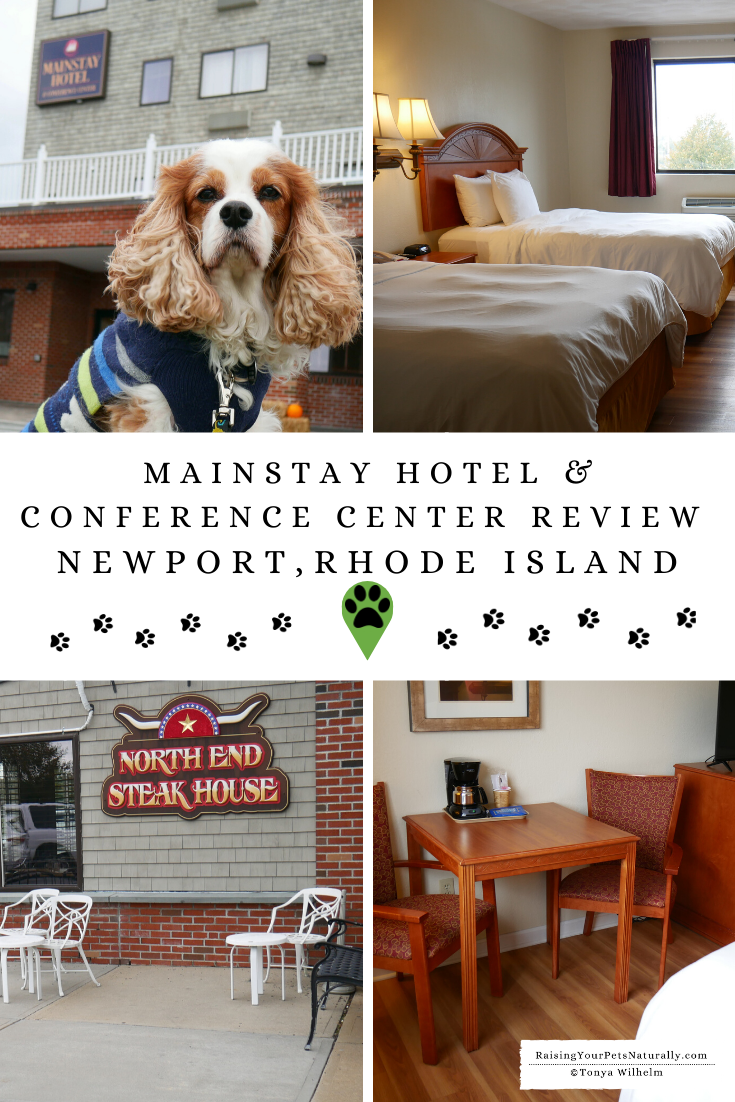 Pet-Friendly Hotel in Newport, Rhode Island | Dog-Friendly Mainstay Hotel & Conference Center Review