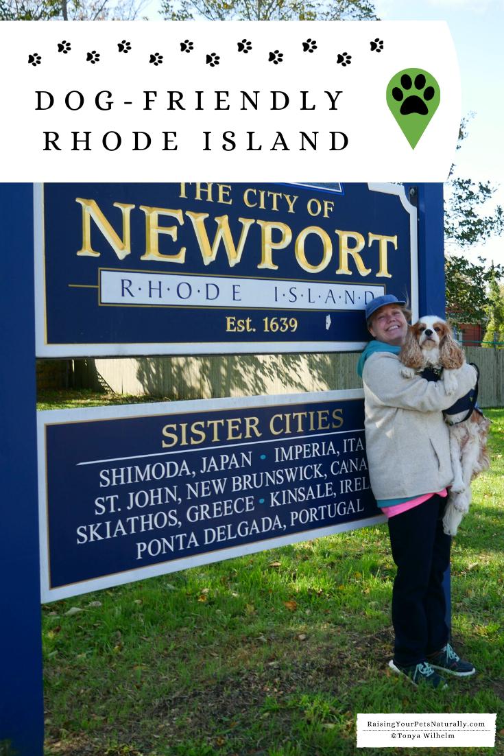 Dog-Friendly Rhode Island Travel Guide