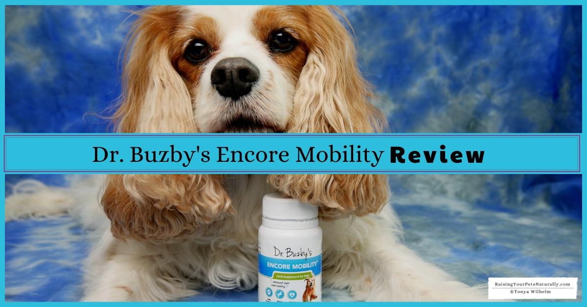 Best supplements for older dogs