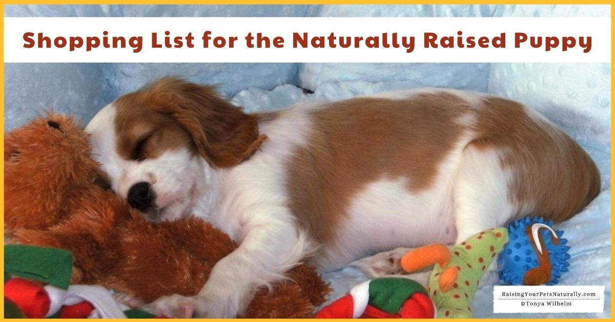 Puppy Shopping Check List