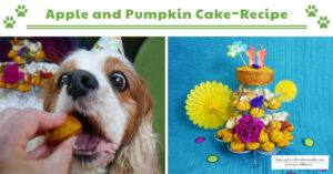 Healthy Dog Birthday Cake Recipe with Apples and Pumpkin | How to Make a Dog Cake (Early access for our Patreon community)