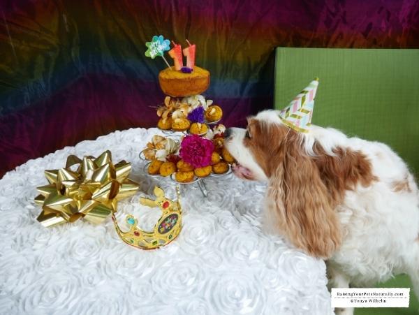 Healthy dog cake recipes