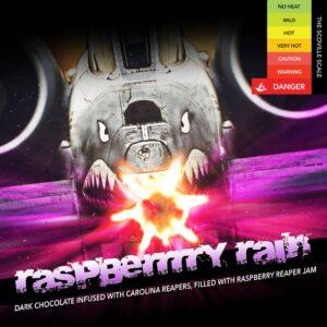 Raspberrrry Rain