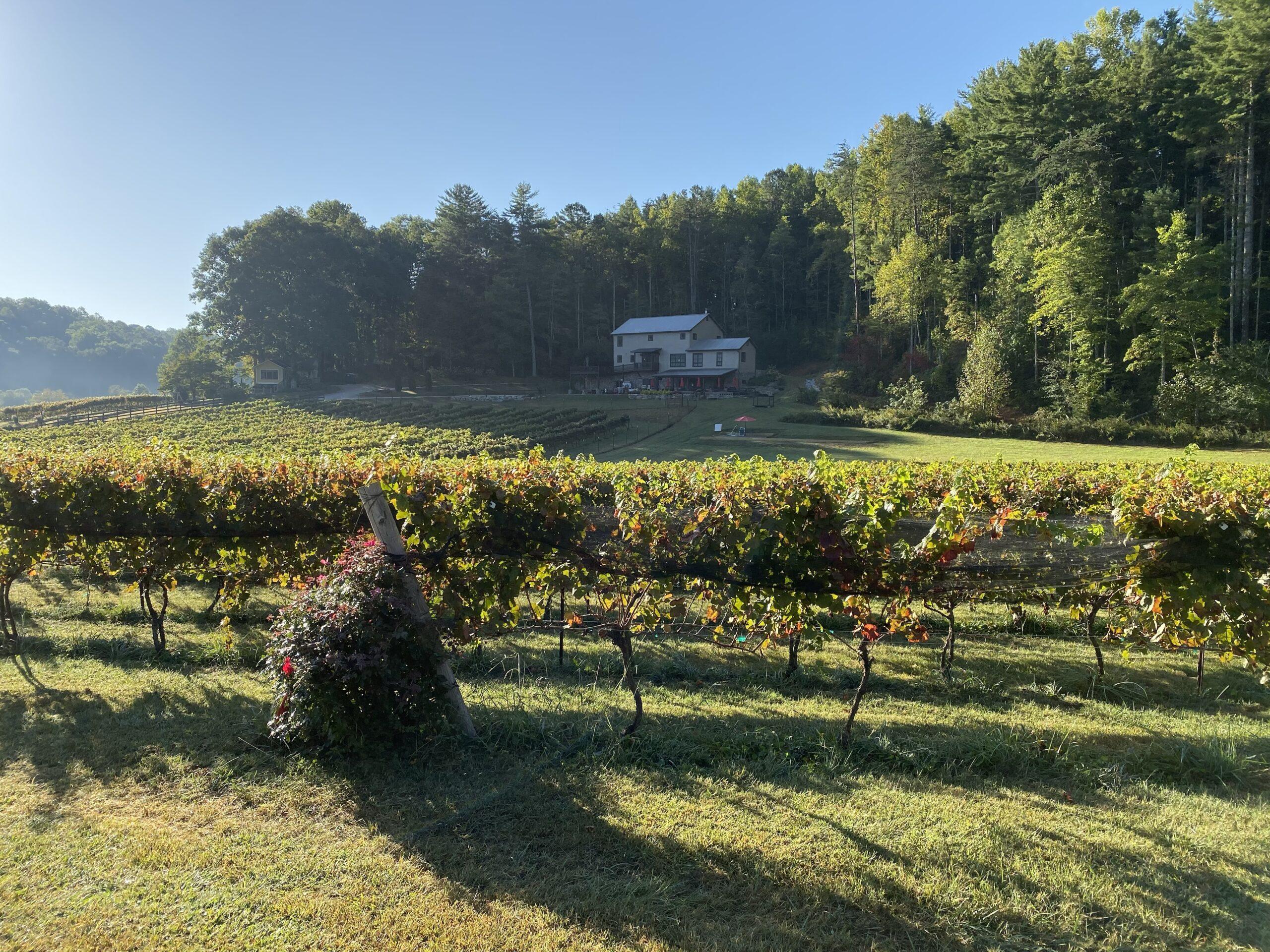 stonewall creek vineyards tasting room