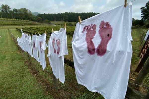 stonewall creek vineyards events
