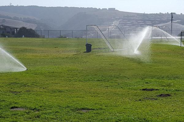school_sprinklers_2