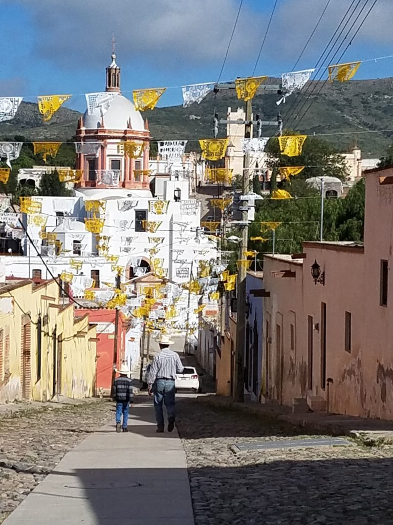 Mineral de Pozos: Ghost Town Revival Among Lavendar Farms