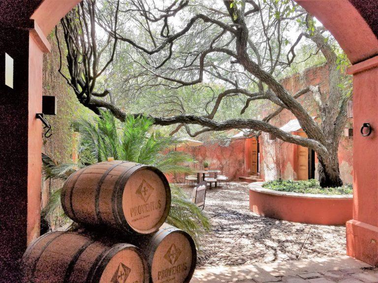 Queretaro Winery: Puerta del Lobo