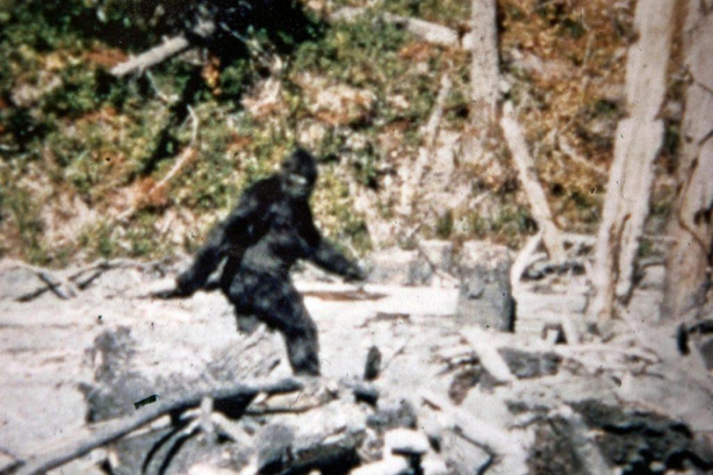 Still the best footage of a Bigfoot so far.