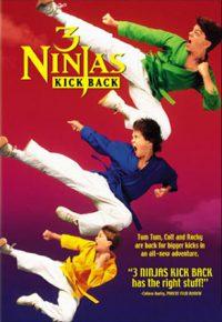 3 ninjas movie poster