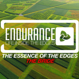 Endurance – Life Inside the Edges – The Essence of the Edges – The Bride