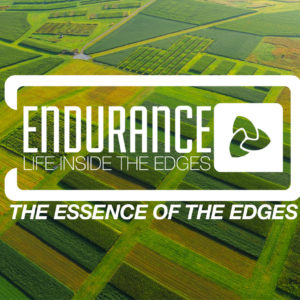 Endurance: Life Inside the Edges – The Essence of the Edges