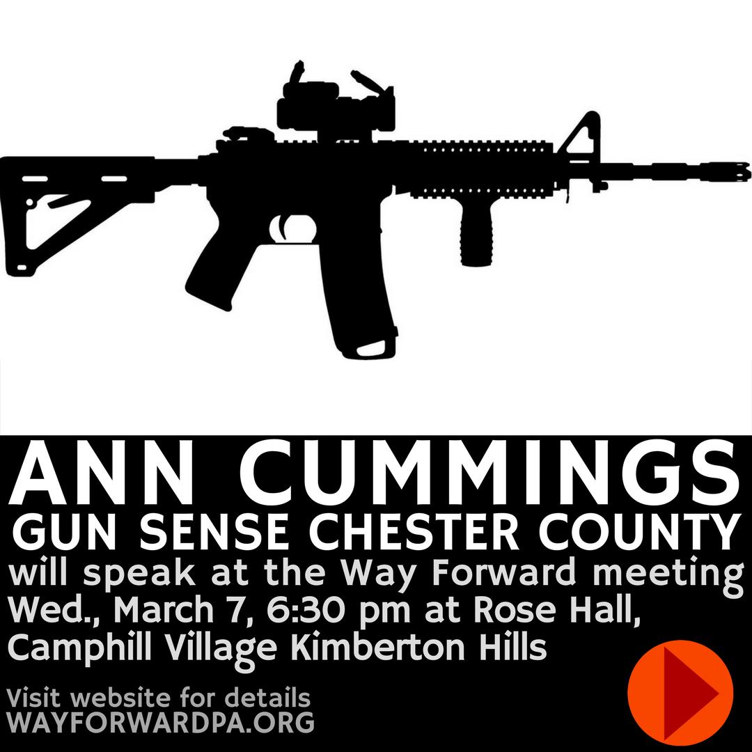 Ann Cummings, Gun Sense Chester County, To Speak At Way Forward 3/7/2018