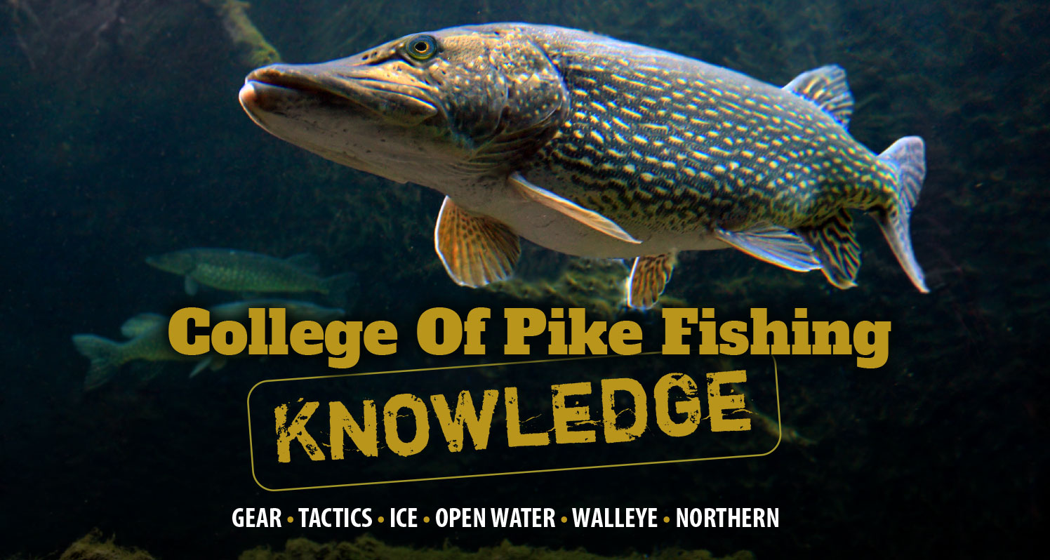 College Of Pike Fishing Knowledge