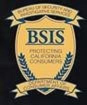 bsis logo