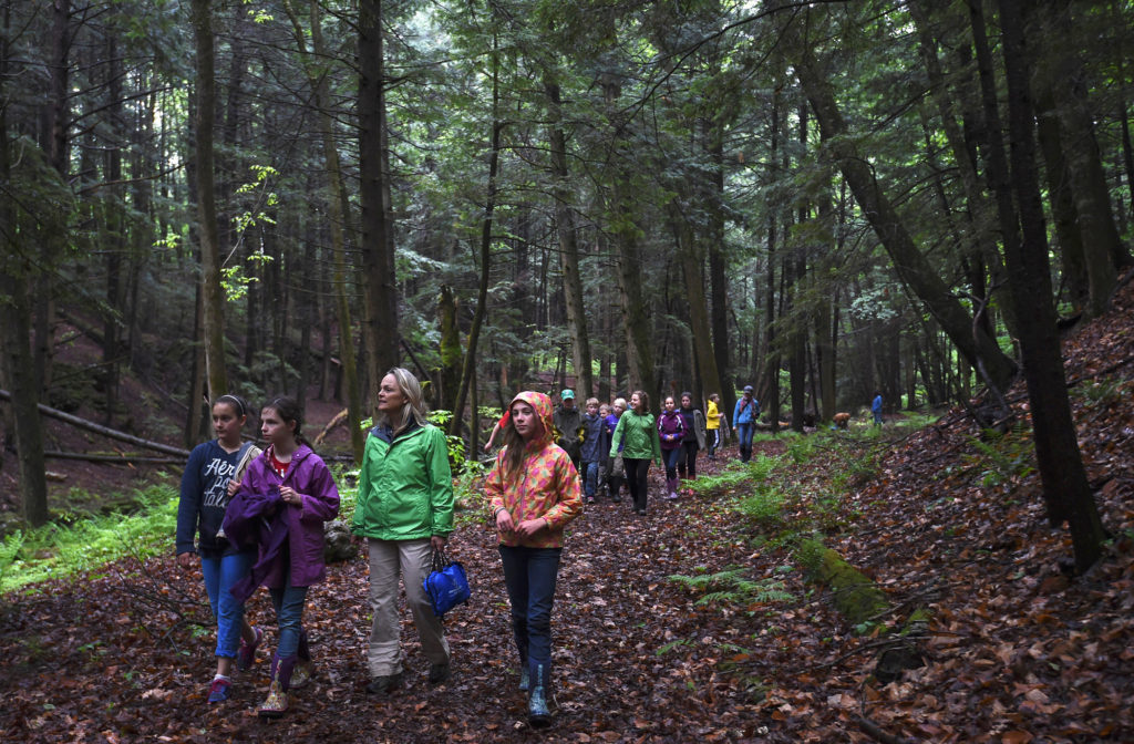 students exploring woods