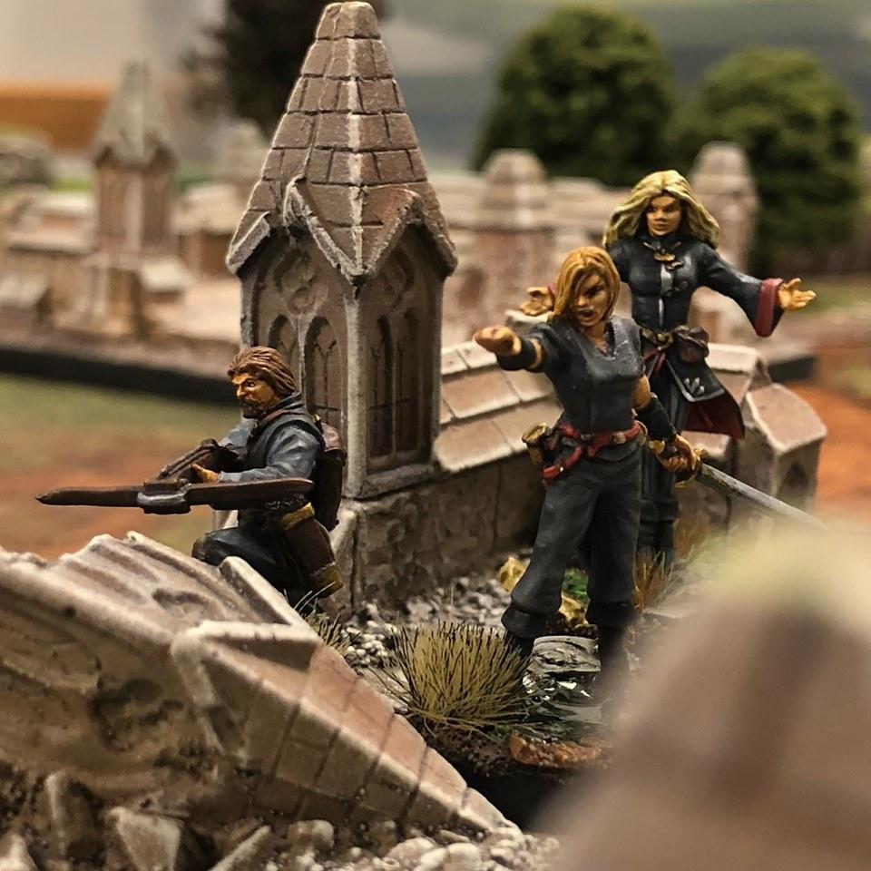 Freeblades 32mm painted miniatures