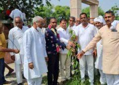 पूर्वजों की याद में पौधे लगाने से मिलता है पुण्यः राजेश नागर