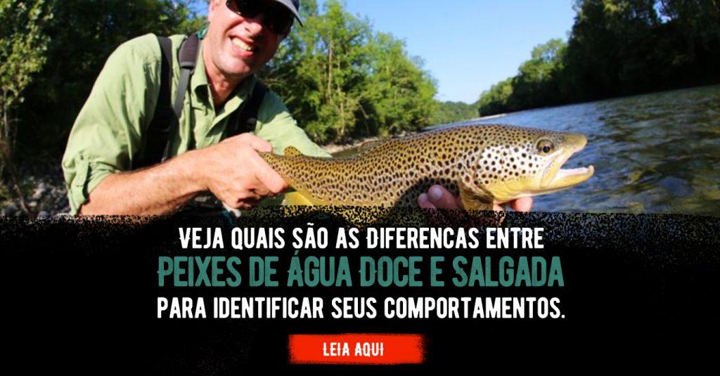 conheça a diferença entre peixes de água doce e peixes de água salgada